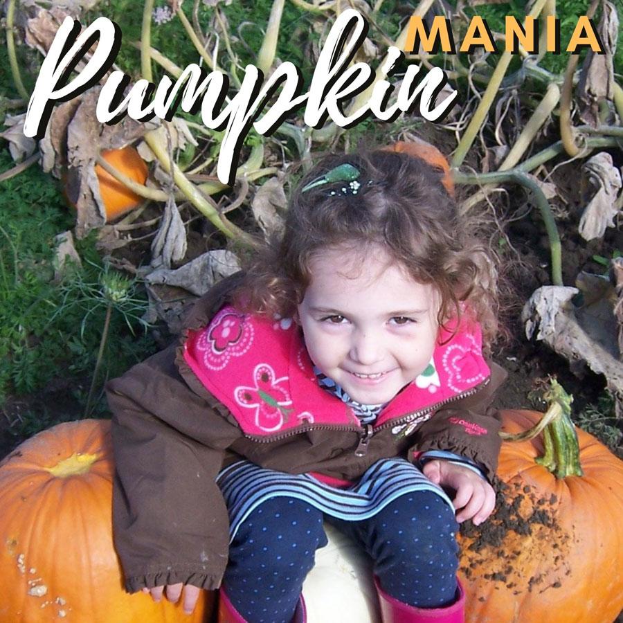 Pumpkin Mania