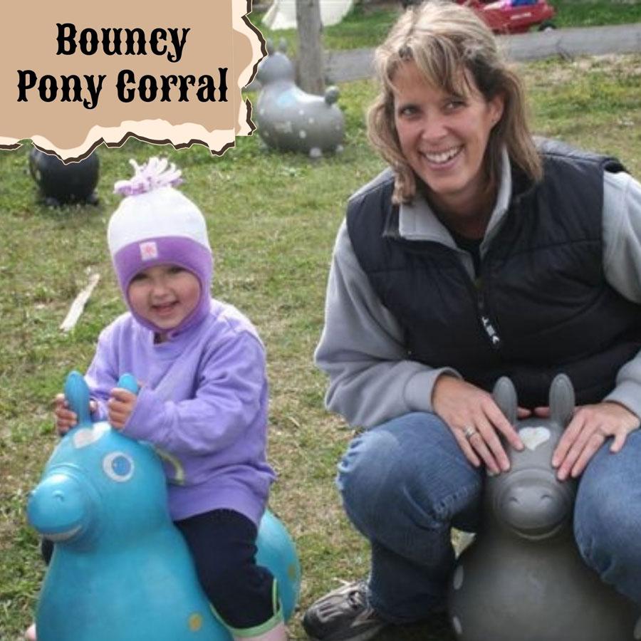 Bouncy Pony Corral