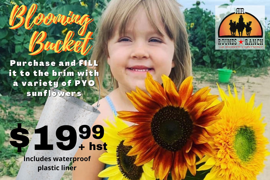 Blooming Bucket